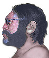 neanderthal author
