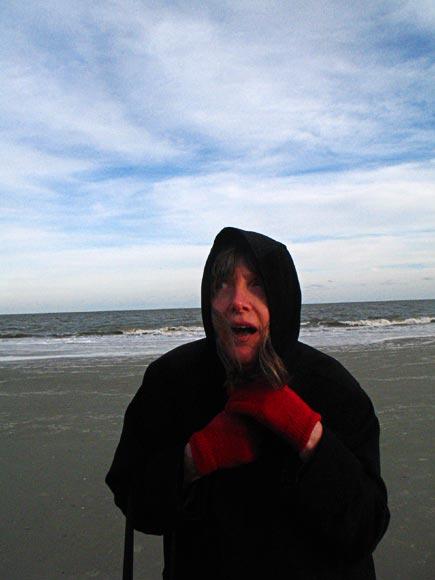 chill january wind off the atlantic on hunting island, south carolina