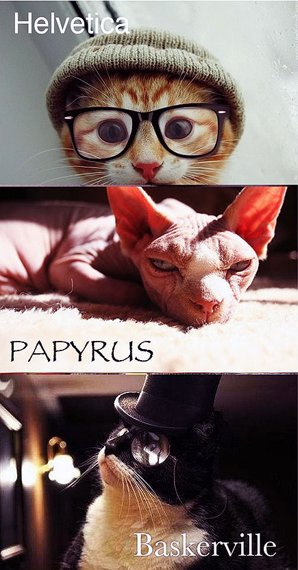 cats as fonts