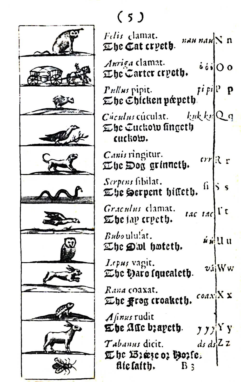 <em>Orbis sensualium pictus</em>, 1659, by Comenius (Czech, 1592-1670), sheet from printed book.